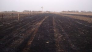 San Jerónimo: Un incendio arrasó alrededor de 50 hectáreas de pastizales y rastrojos de sorgo